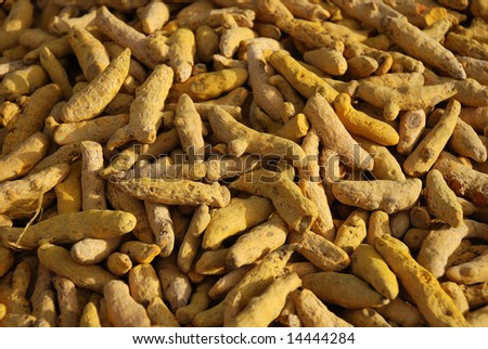 an essential ingredient of curries - stock photo