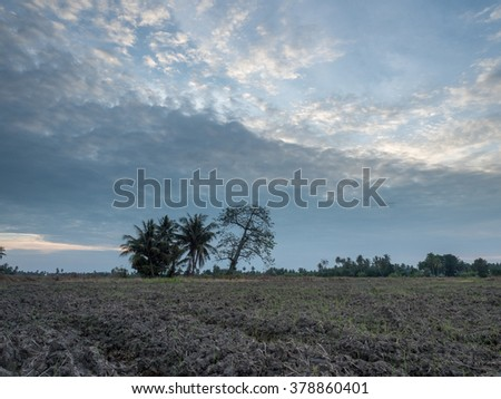An evening sky,with clouds and barren land, HDR mode - stock photo