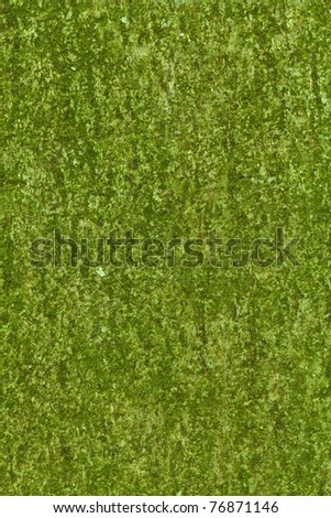 An extreme close-up of a tree bark texture with moss and fractures