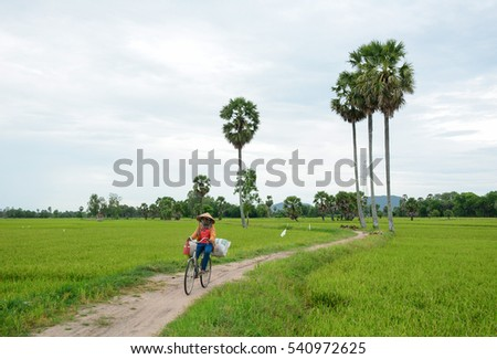 An Giang, Vietnam - Aug 7, 2016. A woman biking on rural road in An Giang, Vietnam. The Mekong Delta is also Vietnam's most important economy region.