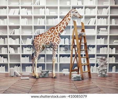an giraffe baby  in the room with book shelves. Creative photo combination concept - stock photo