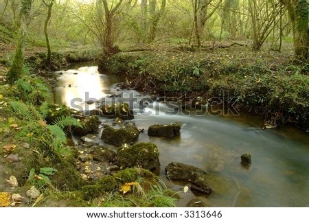 an idyllic course of a stream in the autumn - stock photo