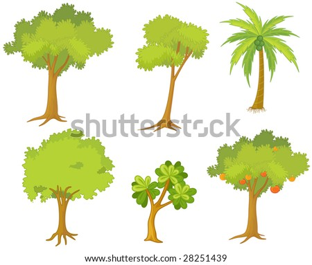 an illustration of various trees and plants