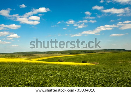 An image of a beautiful green field and blue sky