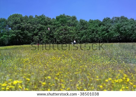 an image of a family at yellow daisy field