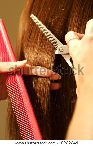 an image of a Female hair cutting at a salon - stock photo