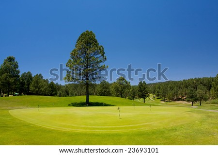 An image of a golf hole with a large tree nearby - stock photo