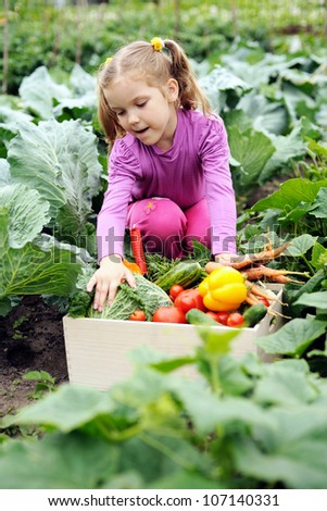 An image of a little girl with a box of vegetables - stock photo