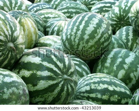 an image of a lots of watermelon