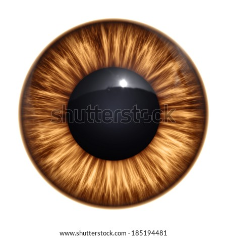 An image of a nice brown eye texture - stock photo