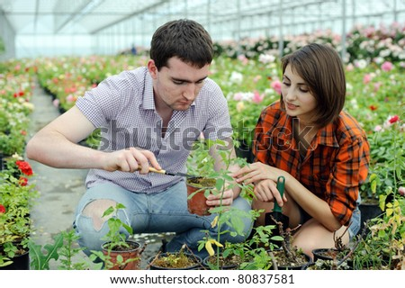 An image of a young couple working in a greenhouse - stock photo