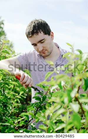An image of a young gardener working in the garden - stock photo