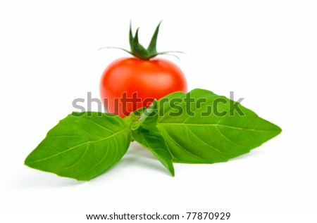 An image of basil leafs with tomato on white background - stock photo