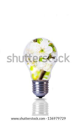 An image of blossom flower inside lightbulb - stock photo