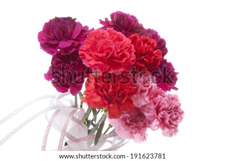 An image of Carnation Mother's Day