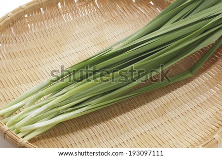An image of Chinese chive