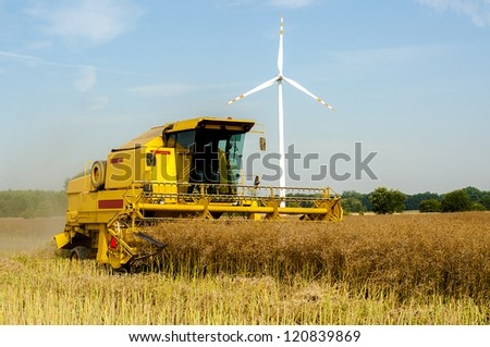 An image of combine harvesting rape - stock photo