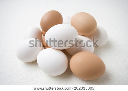 An Image of Egg - stock photo