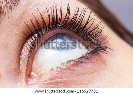 An image of female eye close up - stock photo