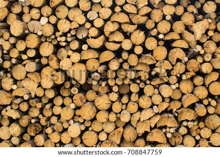 An image of firewood