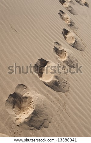 An image of footprints in a sand dune - stock photo