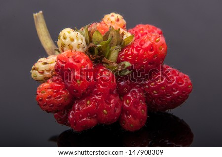 An image of genetic modified strawberry - stock photo