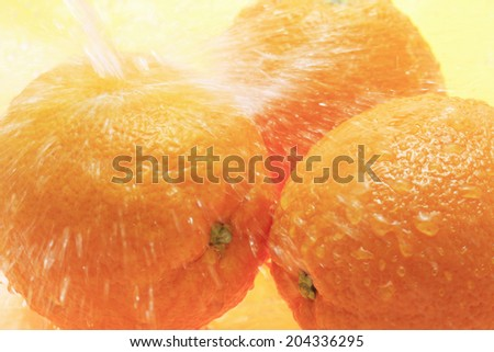 An Image of Orange And Water