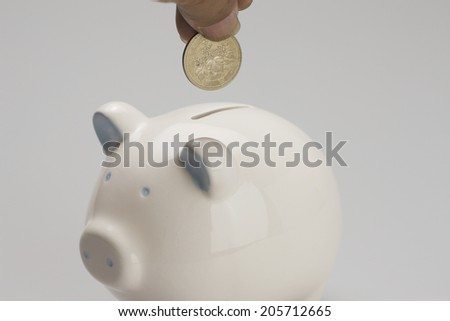 An Image of Piggy Bank