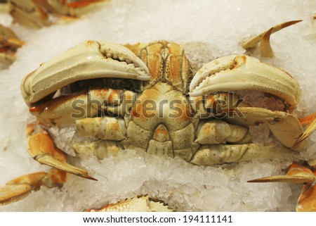 An image of Seafood Market - stock photo