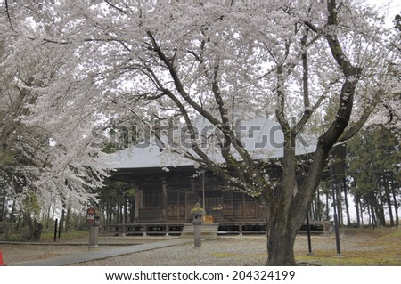 An Image of Shojo Temple