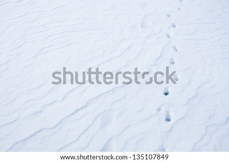 An image of snow detail and shapes - stock photo