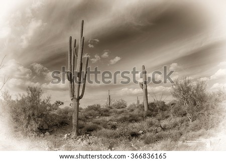 An image of the Superstition desert in Arizona processed with an antique look shows the rugged detail of a dry wilderness.
