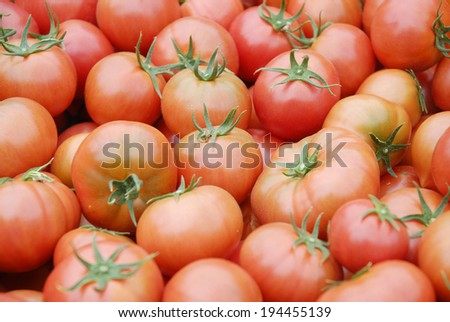 An image of Tomato