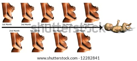 An image showing the different stages of a 9 month pregnancy and a baby  at the end. - stock photo