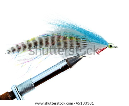 An Imitation Minnow for Saltwater Fly Fishing - stock photo