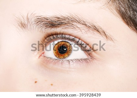 an insightful look on brown colored eyes