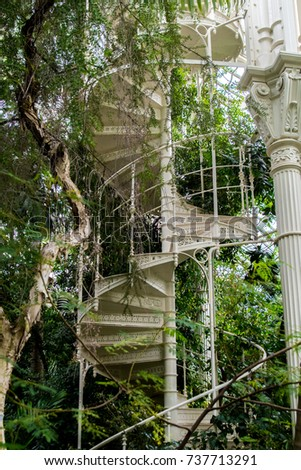 An Iron Spiral Staircase With Handrail And Column Rise Up Amongst  Intertwined Vines And Trees.