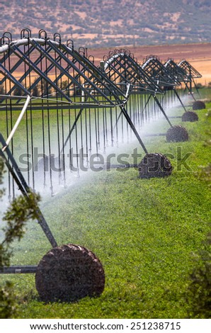 An irrigation pivot watering a field  - stock photo