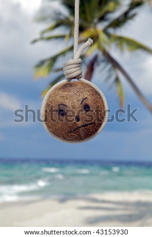 An Island sick coconut. - stock photo
