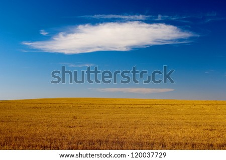 An Isolated Cloud Over Autumn Crop Field - stock photo