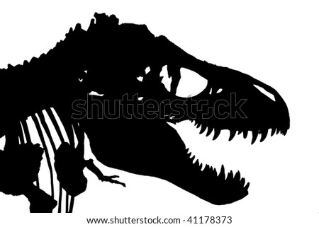 An isolated silhouette of a Tyrannosaurus Rex skeleton - stock photo