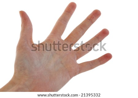An isolated to white image of an open hand