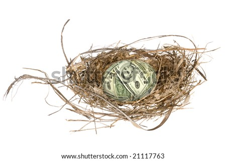 An money egg in its nest waiting to mature and grow into a retirement portfolio. - stock photo