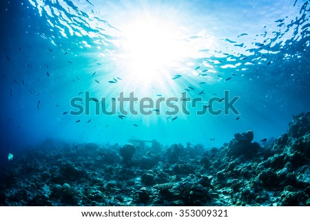 An ocean underwater reef with sun light through water surface. Coral bottom with fish silhouettes as marine aquatic background. Natural background. - stock photo