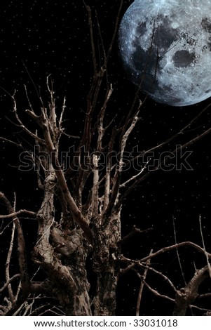 an old ancient tree with a full moon in the background - stock photo