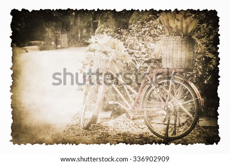 An old bicycle in the garden on the old brown burnt paper isolated on white