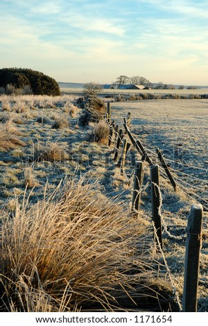 An old boundary fence - stock photo