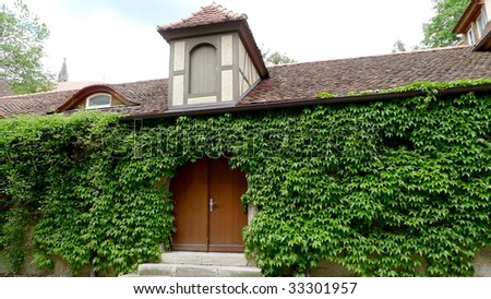 An old cottage covering with green ivy, in Rothenburg, Germany. - stock photo