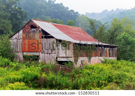 An old dilapidated barn stands among overgrown weeds on a foggy Eastern Kentucky morning. - stock photo