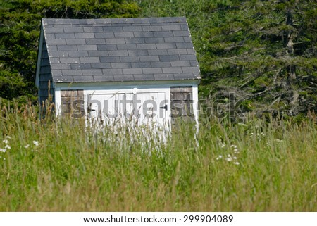 An old farm house shed sits in a field